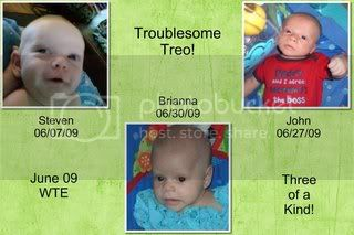 Troublesome Treo