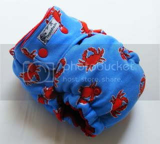 One Size  Fitted Cloth Diaper A Bit Crabby